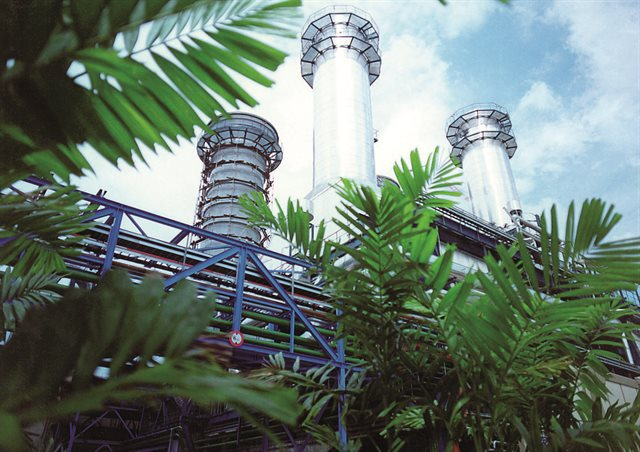 external view of Paka power station with palm fronds in foreground