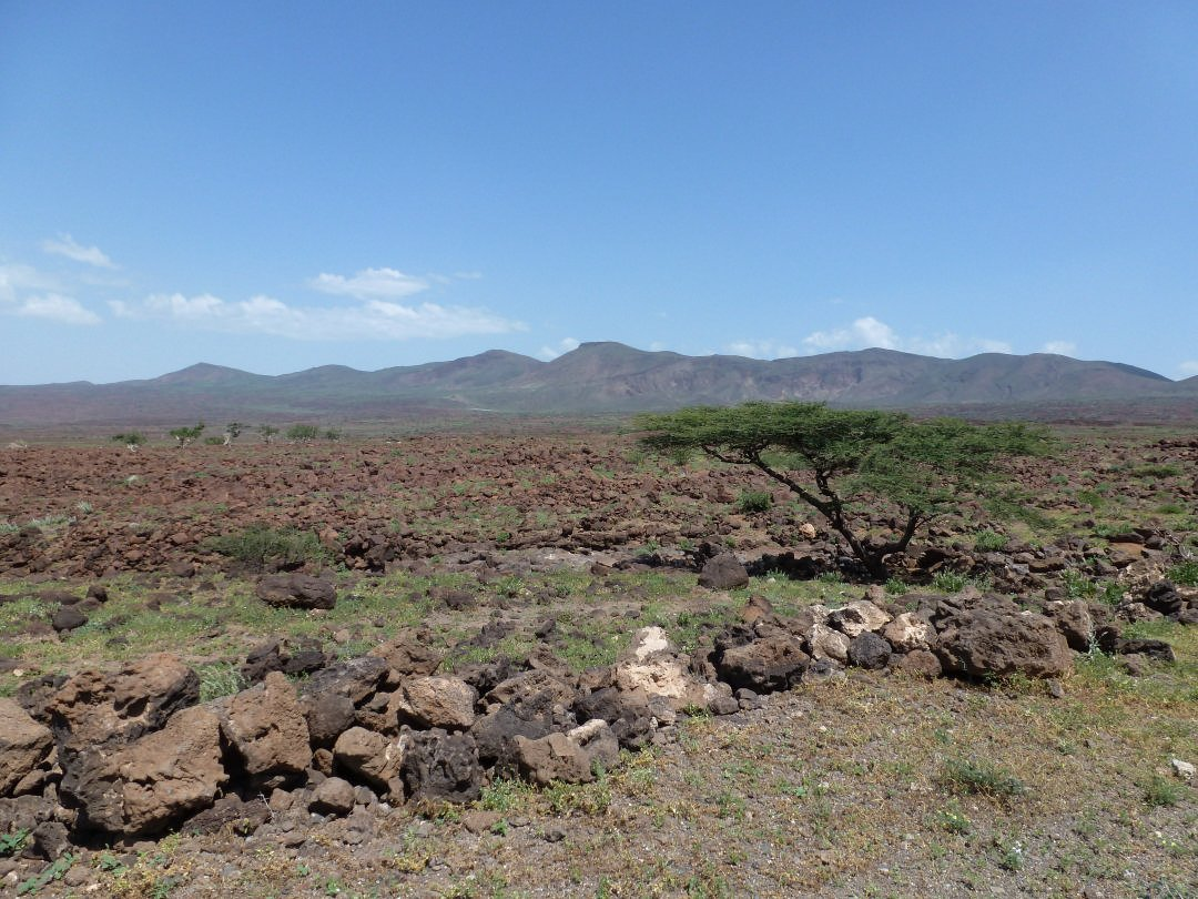 View of the proposed site for the wind farm on the shore of Lake Turkana showing mountains in background