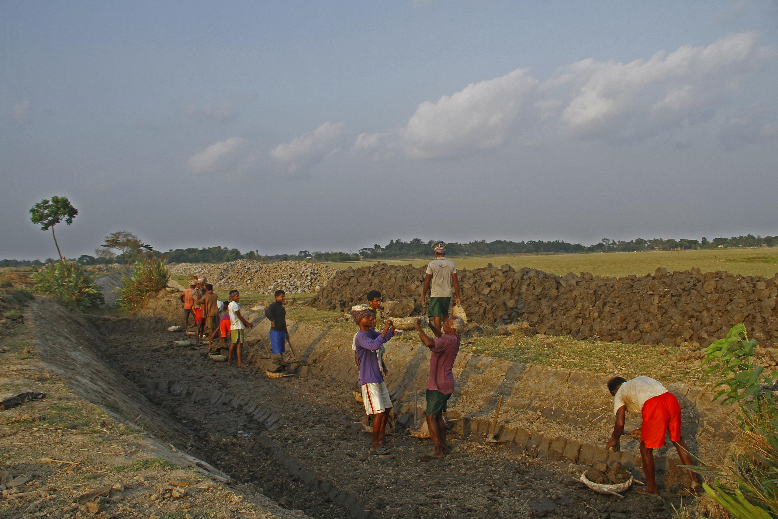 Blue Gold workers in field